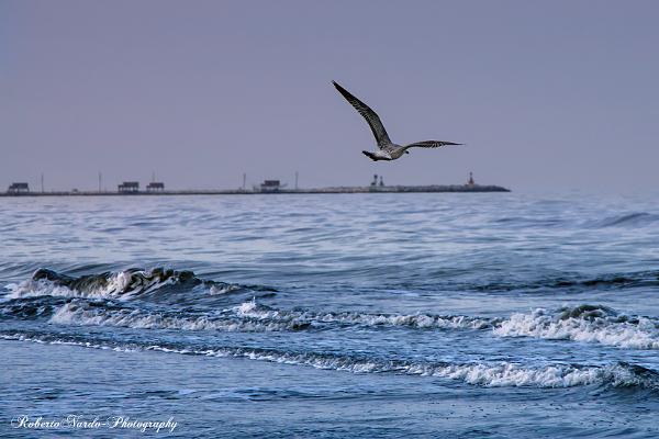 spiaggia-mare-diga