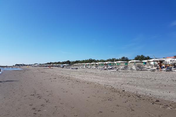 spiaggia-pineta