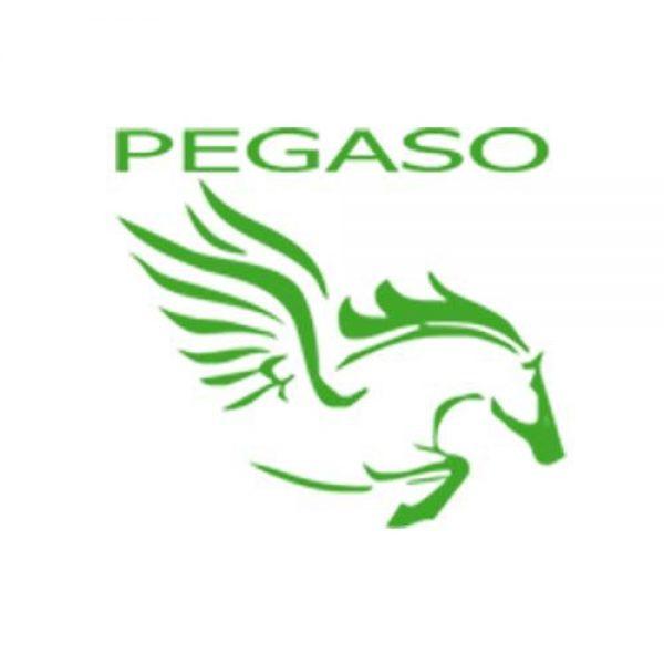 Cartoleria Pegaso logo